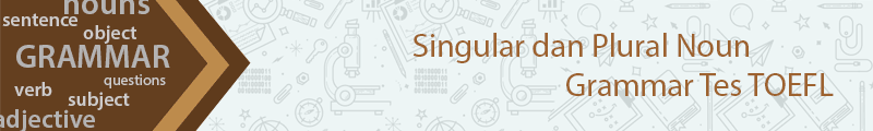 Singular dan Plural Noun Grammar Tes TOEFL